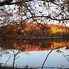 Tronçais, étang de Saloup, f/5,6, 1/100, iso 200, 47 mm