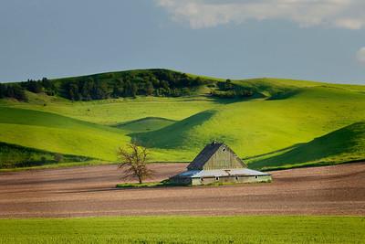 Pyramidal barn with green hills, Washington state