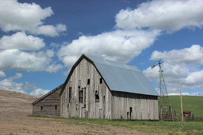 Barn with blue roof, Washington