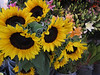 Sunflowers outside a shop in Mexico City