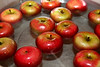 """Bright fresh apples waiting their turn to be """"bobbed"""""""