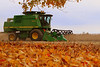 Perfect Day to Combine, DeKalb County, IN  USA 2011