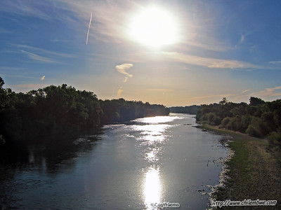 American river daily