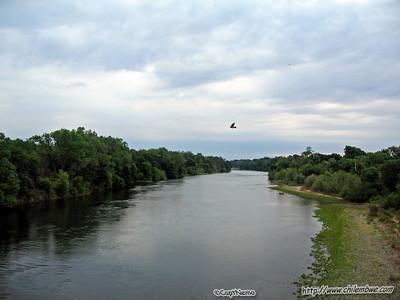 American River 5-28-2008