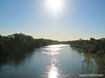 American River 6-5-2008