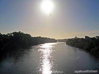 American River 6-17-2008