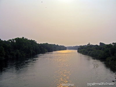 American River 6-26-2008