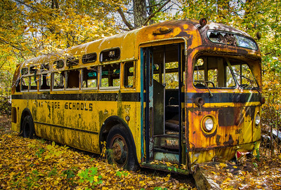 """Derelict Oak Ridge School Bus"""