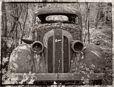 """Pontiac Lost in the Woods"""