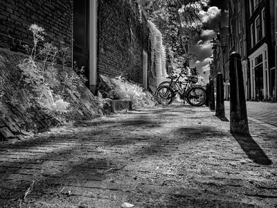 Bikes in an Amsterdam Street
