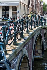 Bikes along an Amsterdam canal.  With a dead bird.