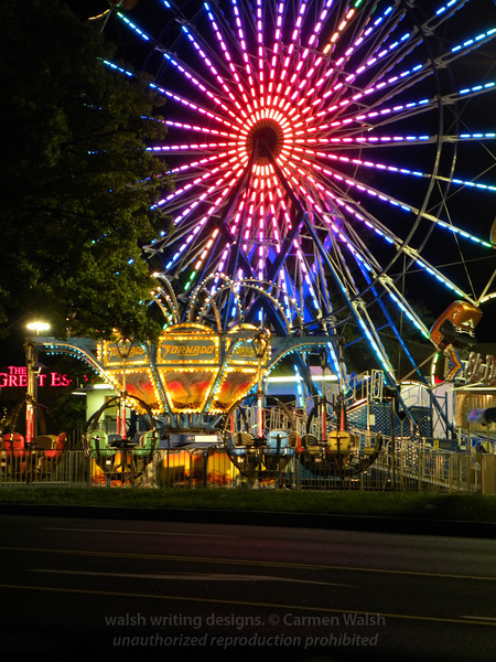 Ferris wheel 14