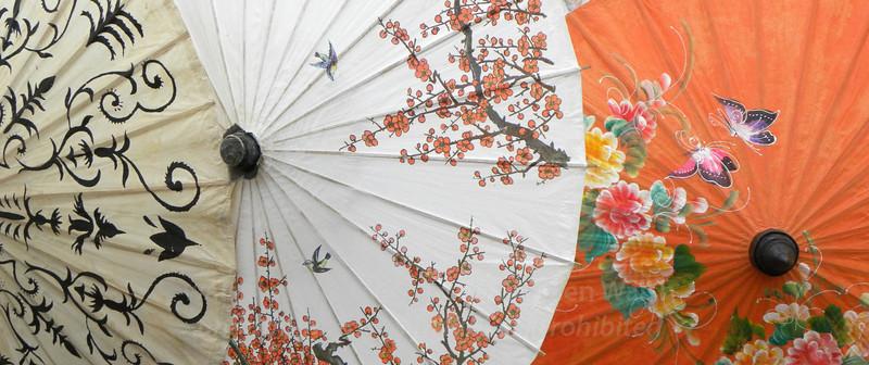 Pretty parasols, orange