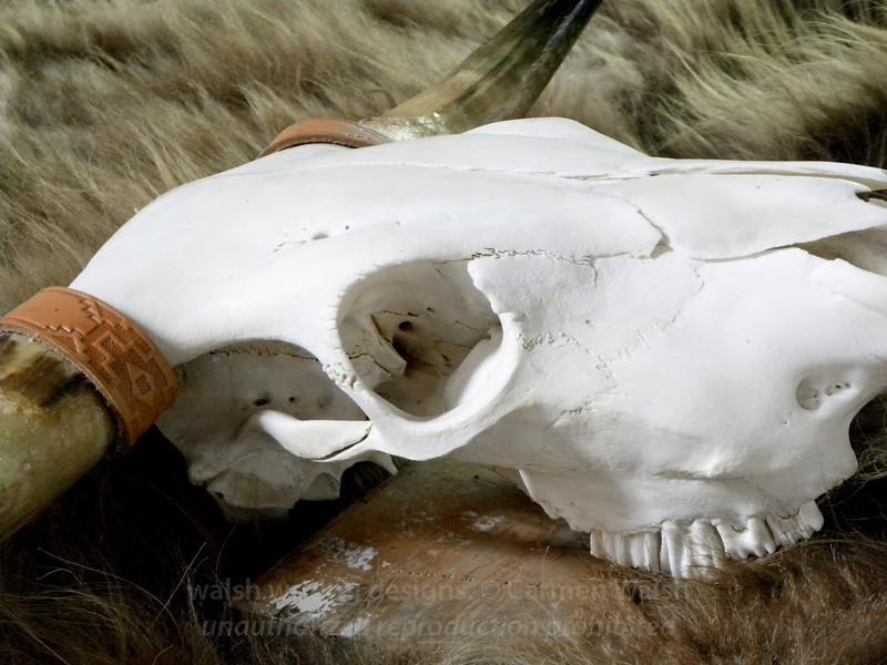 Western skull at market