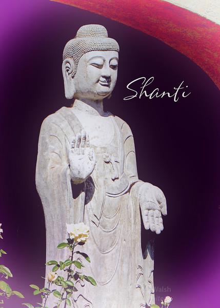 Buddha Shanti (purple)