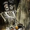 A Spooktacular Ride