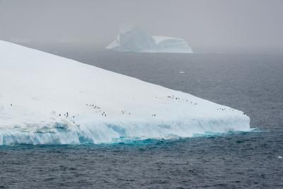 Antarctica 2015/2016