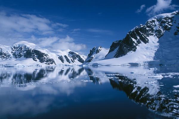 Antarctica, South Georgia Island, and the Falklands  2002