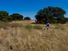 Antioch Dunes National Wildlife Refuge, Contra Costa Co., CA