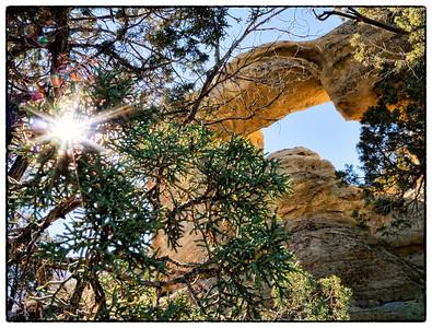 An arch hidden in the New Mexico desert.