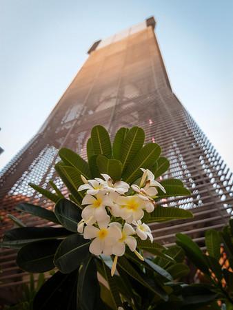 IMG_9861_Masdar WGP_045 PS