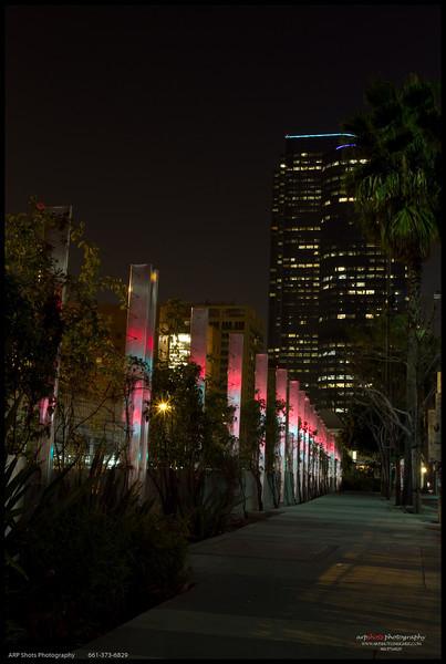 LA in the Dark-23
