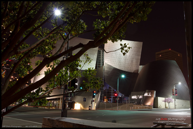 LA in the Dark-11