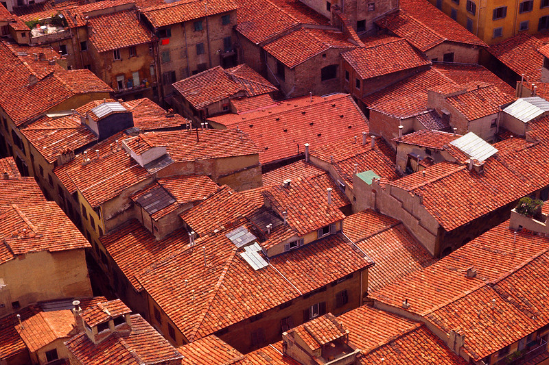 Red Rooftops of Florence, Italy