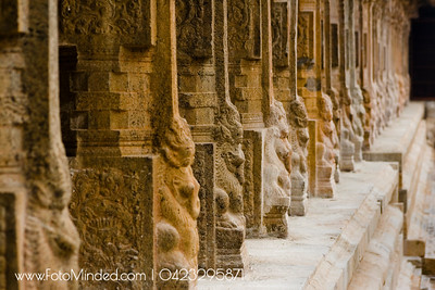 Pillars of Tarasuram Big Temple. The combination of different animal faces is called Yazhi, which are very common in every Hindu temples. The one what you see is the dragon with elephant trunk.  Photography: Karthik TK