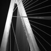 Ravenel Bridge detail, Charleston, South Carolina
