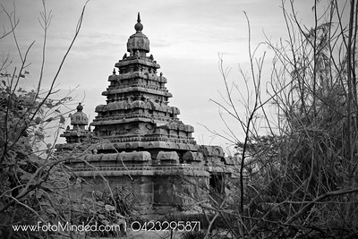 Shore Temple in Mahabalipuram is one of the major attraction to the tourists and visitors of Chennai, the capital of the Tamil Nadu state. It is believed that there were seven magnificent temples what are known as the seven pagodas, built near the sea share. But the lonely survivor is the shore temples. It was originally constructed during the 7th century and later it was Narasimha Varman II, (Rajasimha) completed the skilled work in his rule. This is one of the oldest of the south Indian Temples which were structural temples constructed in the nature Dravidian style.  When I visited here to photograph this masterpiece, I noticed debris and plastis around the temple. But when seeing this temple, nothing other than this temple come to my focus.   One fine quality of one's self will overwrite all other negatives.