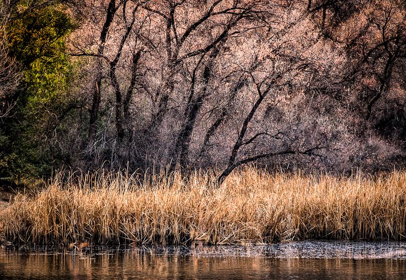 Granite Lake  Prescott Az