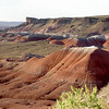 Beautiful Painted Desert