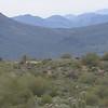 Arizona Roadside