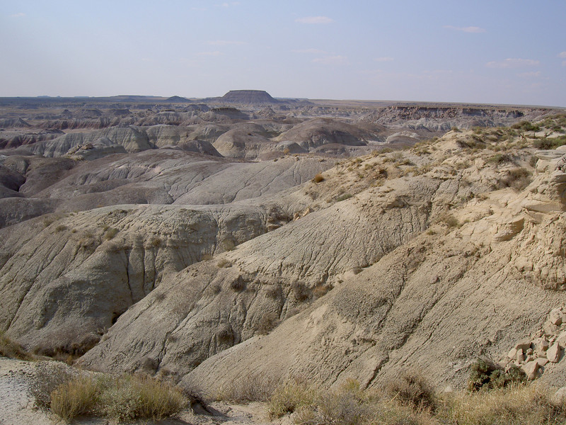 Badlands in Summer Heat