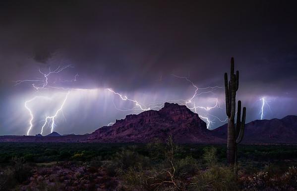 037 - Red Mountain Saguaro Lightning