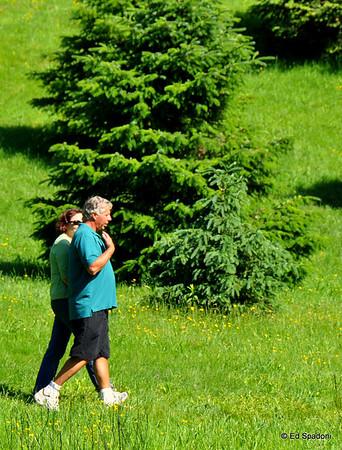 Arnold Arboretum, May, 2009
