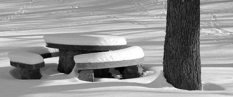 A snow covered bench in Swope Park.