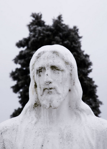Ice on monument and tree in the Floral Hills Cemetery.