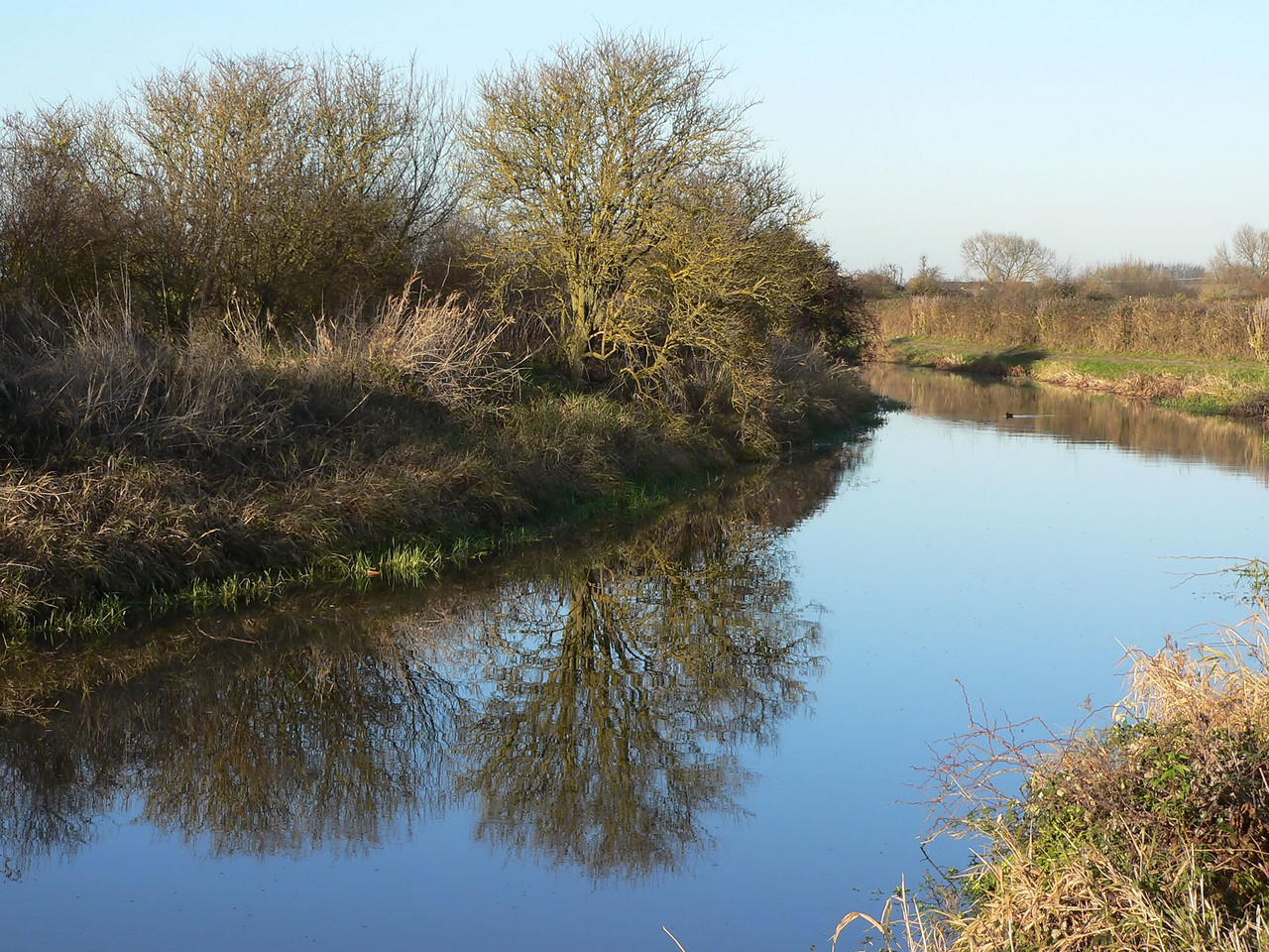 Canal (Wendover Branch of the Grand Union)