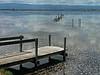 Don Edwards San Francisco Bay National Wildlife Refuge - Salt Water Pond