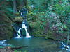 Cataract Falls in Marin. One of the most stunning walks in the SF Bay Area is up this series of falls after a good rain storm.
