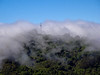Fog Rolling Over Berkeley Hills
