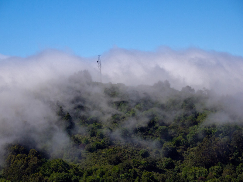 Fog Rolling Over Berkeley Hills