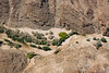 Namib Desert along the Kuiseb River
