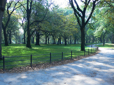 Central Park - New York, NY - US