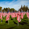 It was very tough to get the scope of how many flags were present.  I took this picture in Panorama mode with my Galaxy Note 3.