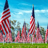 this picture and the next are the same picture, but I was trying to portray two very different feelings.  <br /> <br /> I wanted to make the flags big with vibrant colors to honor the men and women that fell in battle.  I wanted to capture the significance of their sacrifice.