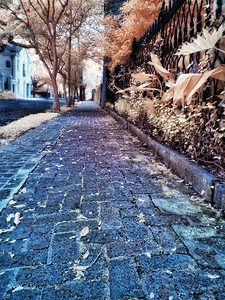 New Orleans Sidewalk IR