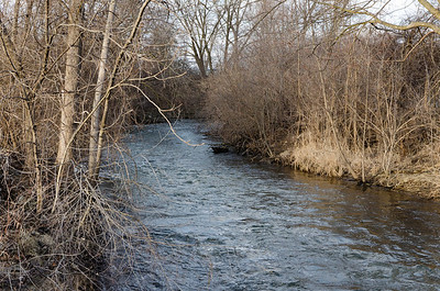 River in e.n.Hines Park-5459